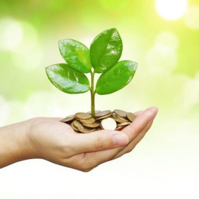 7 Ways To Go Green And Save Money