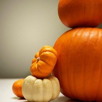 21 Amazing Pumpkin Recipes