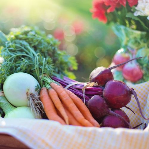 5 Proven Ways To Save Money On Groceries
