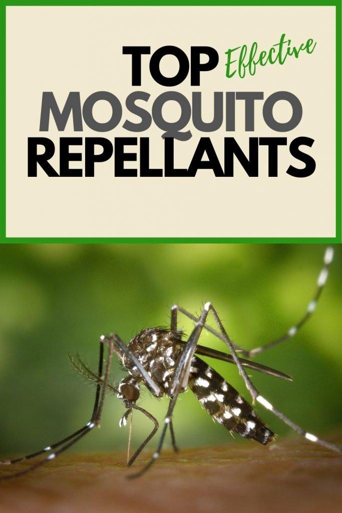 best mosquito repellent