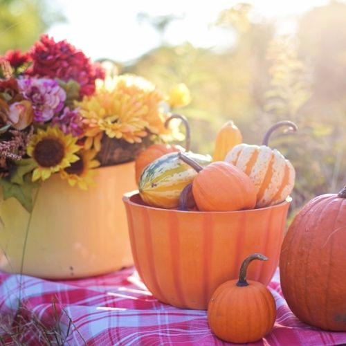 fall DIY crafts